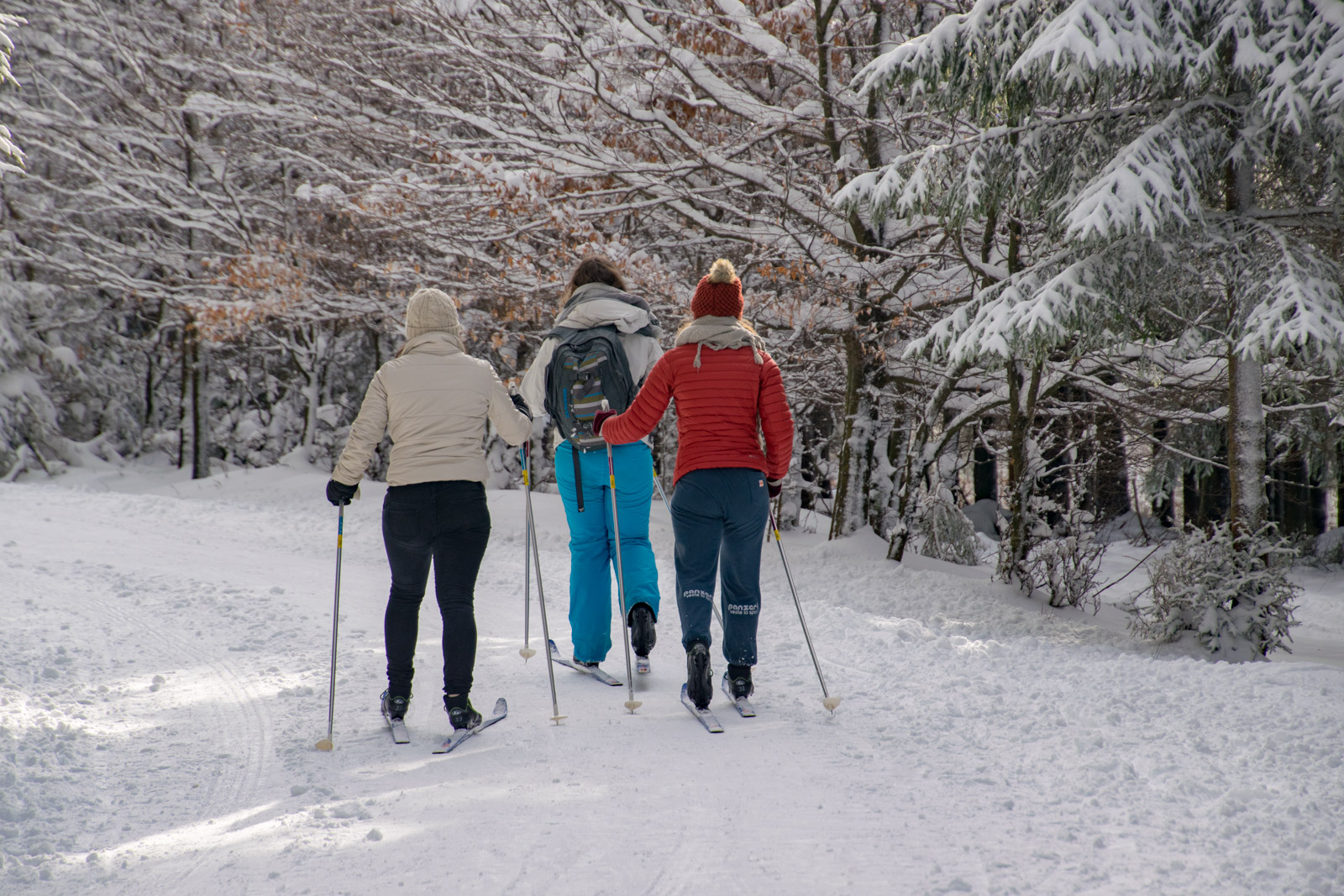 Langlaufen in de Ardennen